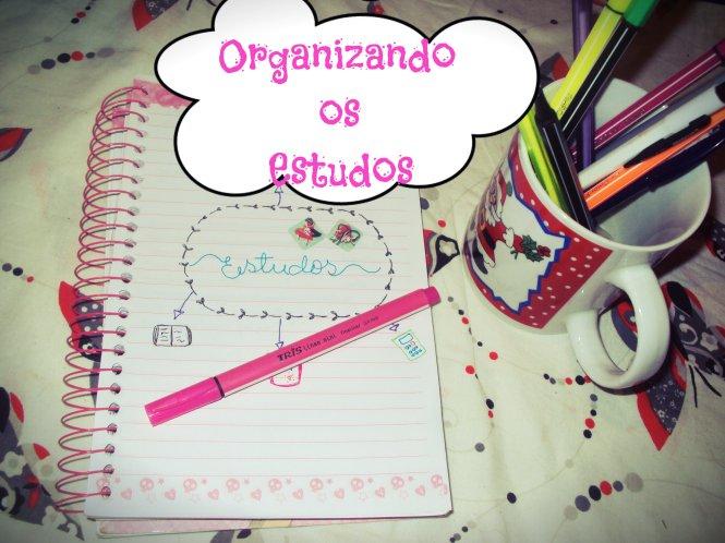 Blog organizando