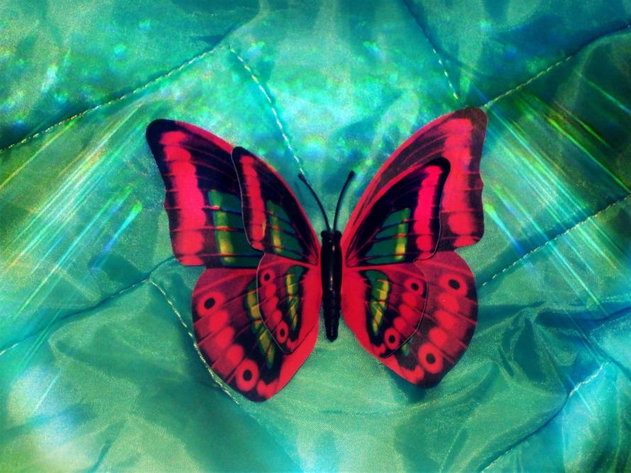 borboleta dois