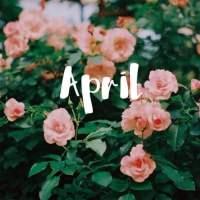 Bem vindo Abril!
