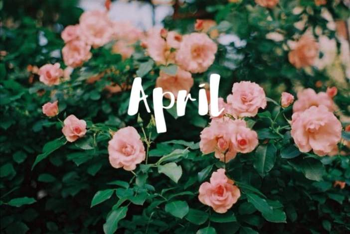 bem vindo abril