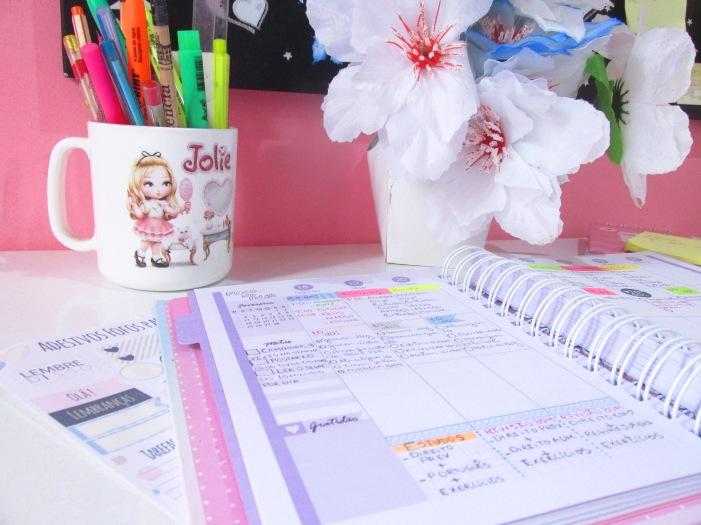 como ter uma semana organizada e produtiva