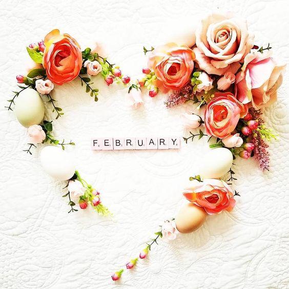 wellcome february