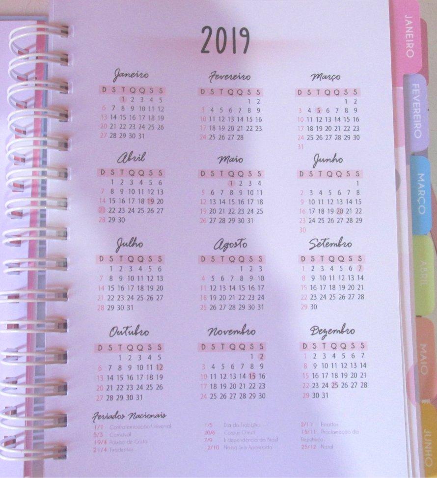 planner calendário 2019